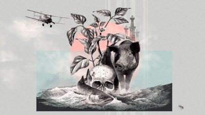 El falso neodesarrollismo y su cruzada contra los reclamos ambientales