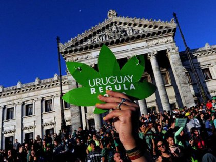 Legalización en Uruguay: un registro con muchas dudas